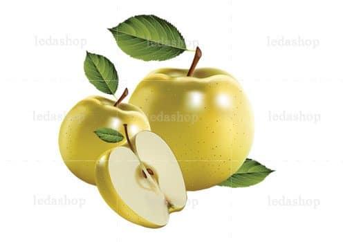 وکتور سیب لایه باز