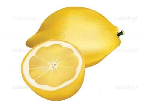 وکتور لیمو ترش