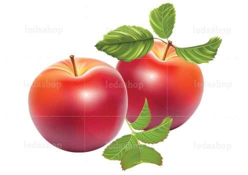 وکتور سیب عید نوروز لایه باز