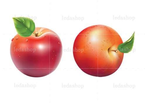 وکتور سیب قرمز لایه باز