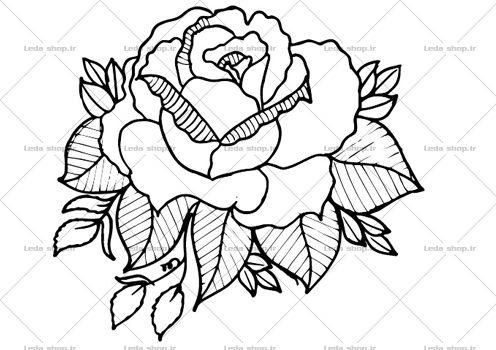 وکتور گل رز مشکی لایه باز